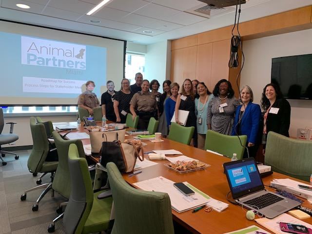 Strategic Planning for Animal Partners Miami first meeting with all the partners