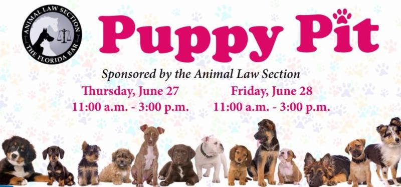 ad for the puppy pit at the florida bar with a row of puppies on the bottom of the ad