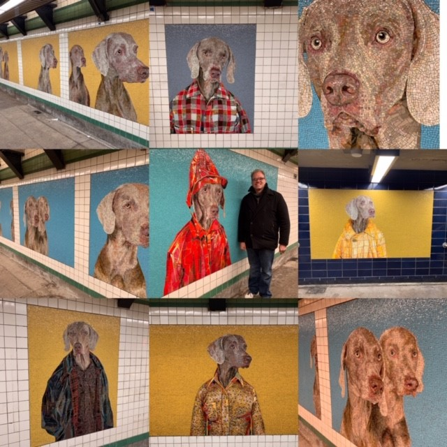 collage of wegman dog pictures made out of tiles in the subway station in NYC