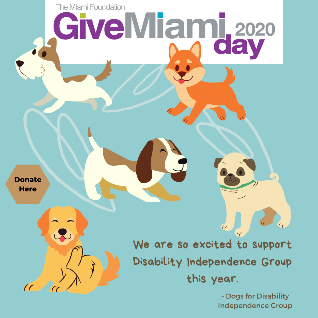 Image contains the text that says - give miami day 2020 we are so excited to support disability independence group this year dogs for disability independence group with a blue background and 5 dogs jumping around.