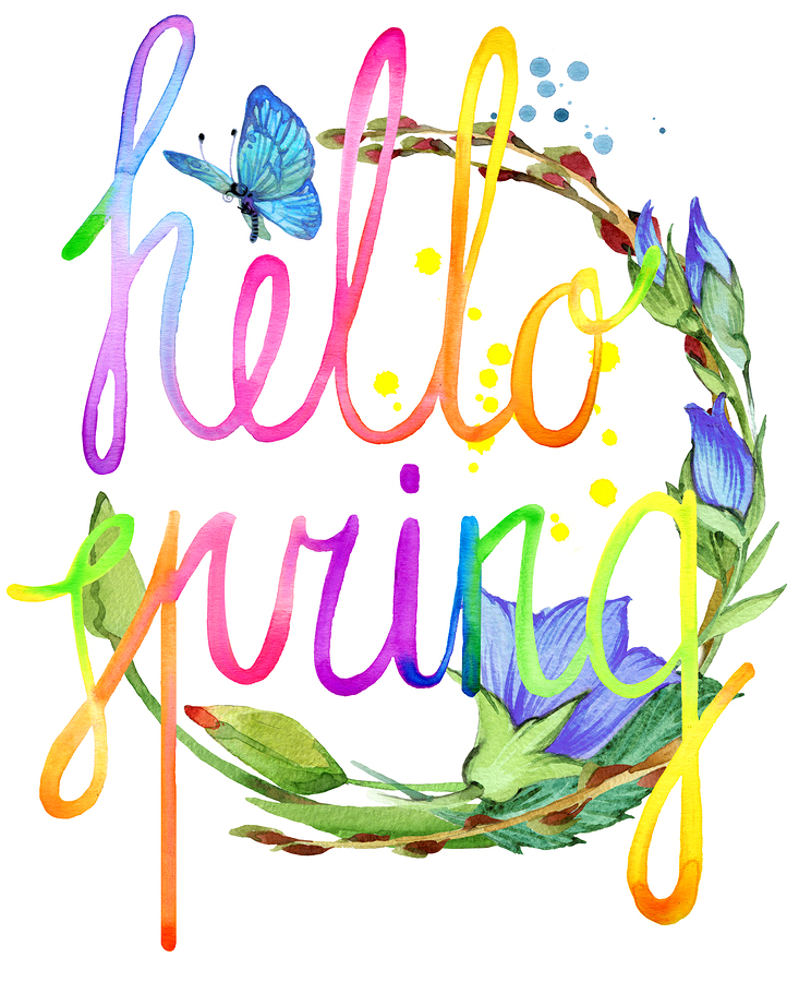 Hello Spring.  Watercolor spring flower and hand written text. Watercolor spring  illustration. Hello Spring text background. Hello Spring lettering background for greeting card_ poster.