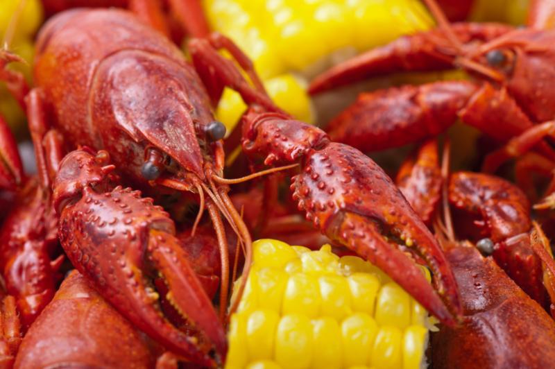 crayfish_boil.jpg