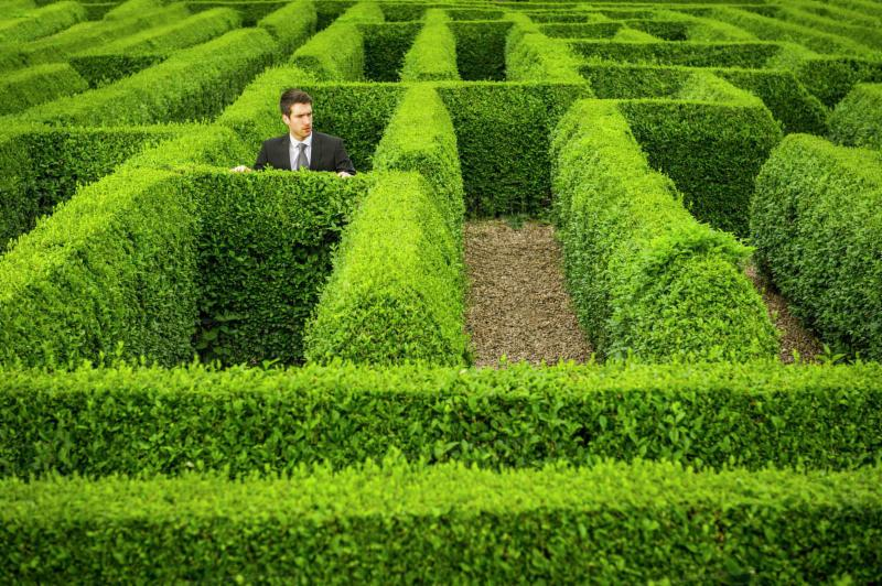 Hedge maze trapped