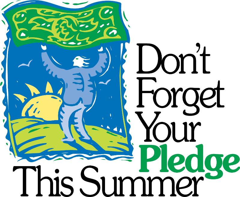 Summer Pledge - Don't Forget
