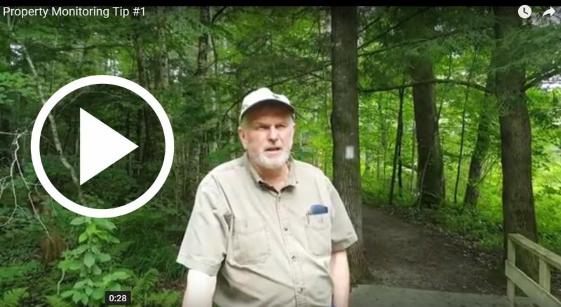Dave Hawke explains why it may someday be important you recorded that red squirrel or Mallard Duck sighting