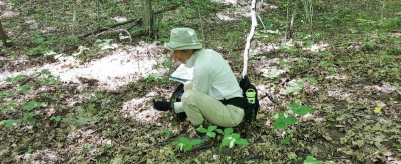 Ingrid Vander Marel monitoring Elliott Woods