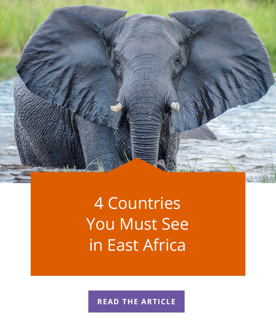 4 countries you must see in East Africa. Click to read the article.
