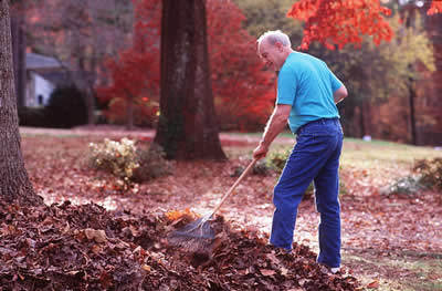 elder-man-raking.jpg