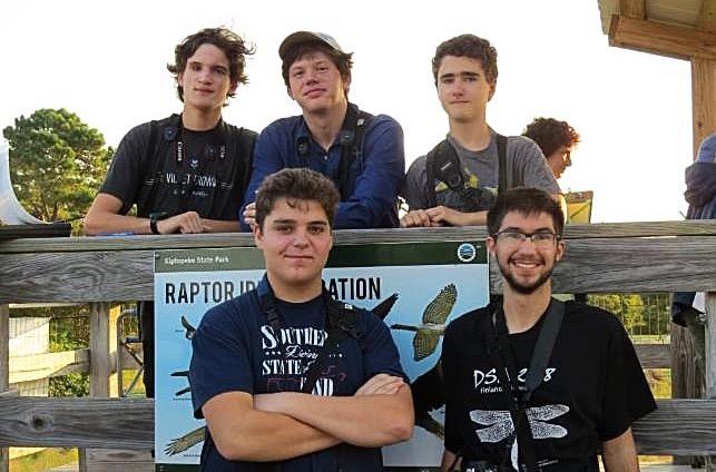 Subadult Shorebirds Team
