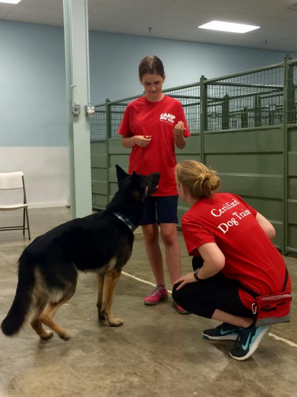 Stephanie, a student from the 2016 UD Summer Camp, at Bow Wow Camp