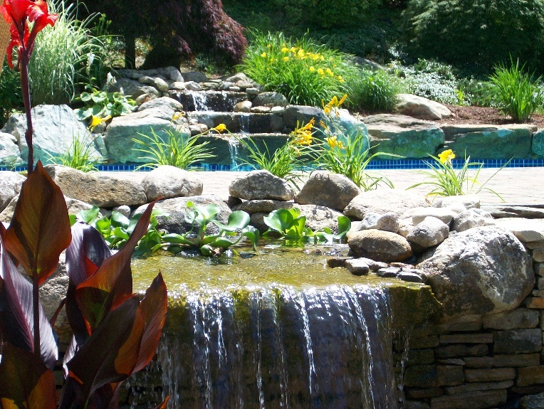 Pool with Water Fall and Planting