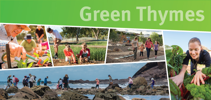 Green thymes banner