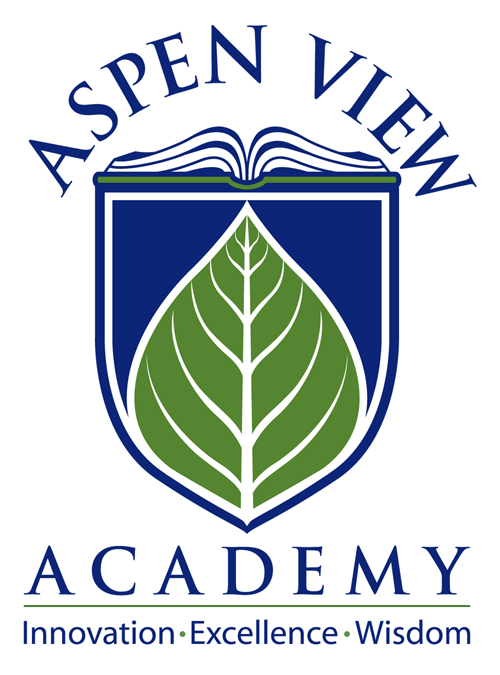 AVA Logo 1