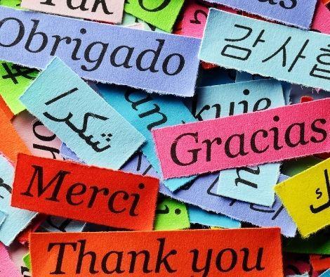 Thank You SYA Volunteers