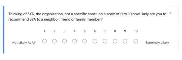 SYA Spring Survey