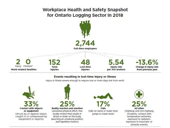 Statistical infographic logging health and safety