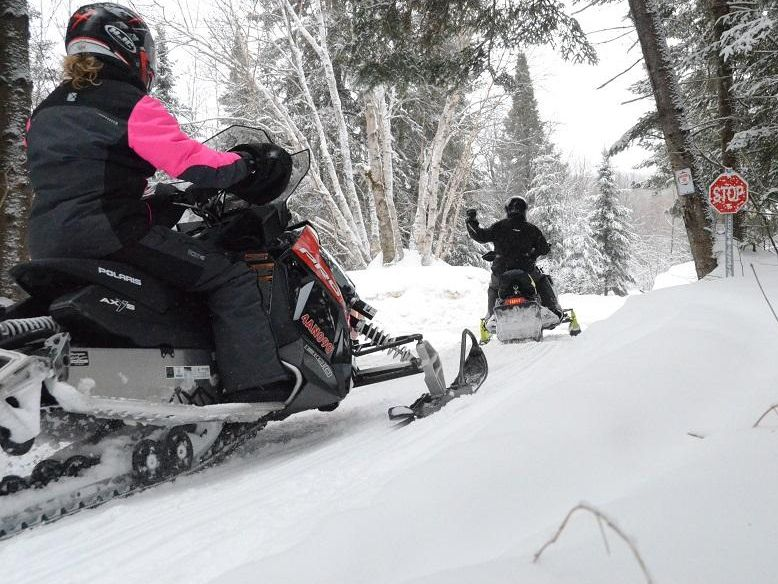 Two-snowmobilers-forest-winter