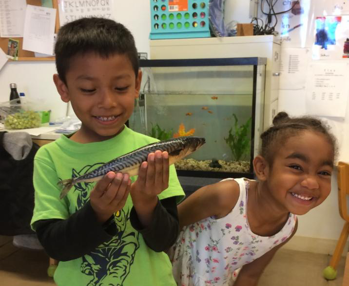 Science with fish