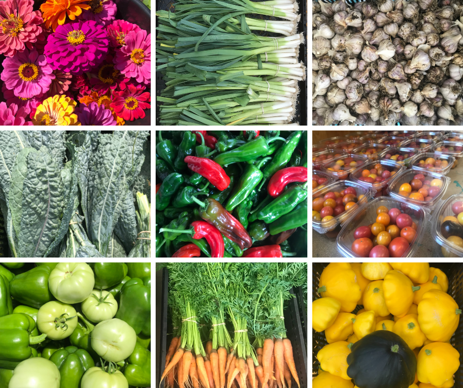 Produce Collage Urban Farm 2020