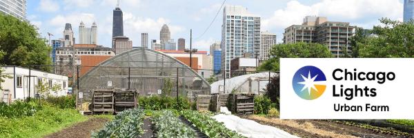 Chicago Lights Urban Farm banner 2020