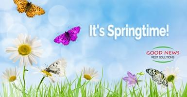 It's Springtime