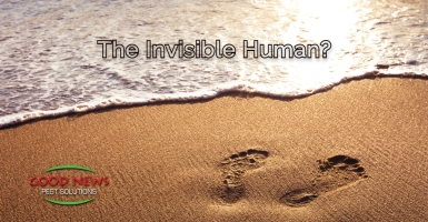 Invisible Human
