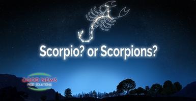 Scorpio? or Scorpions?