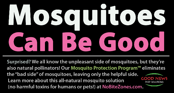 mosquitoes can be good