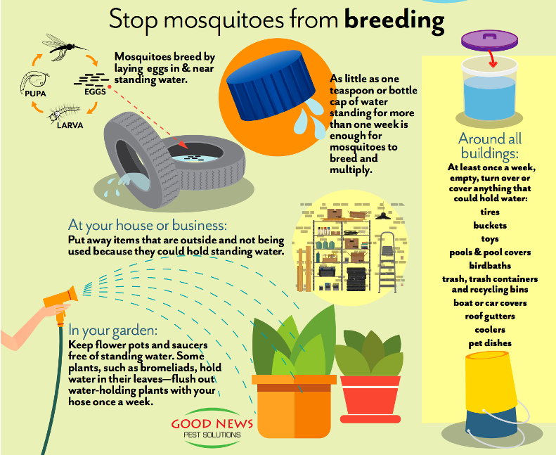 STOP MOSQUITOES FROM BREEDING