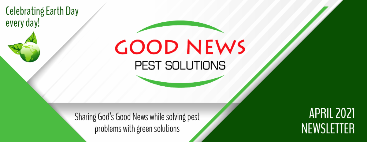 Good News Pest newsletter