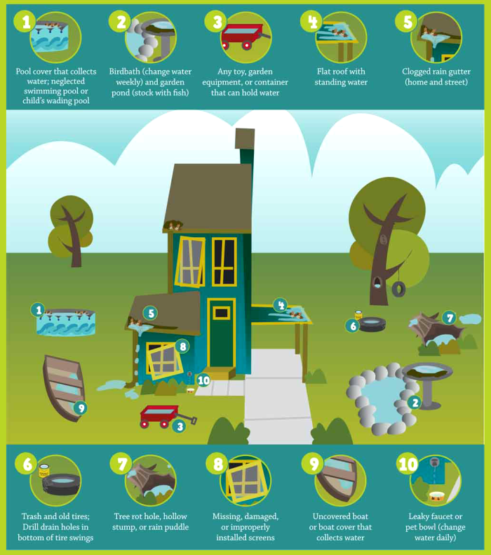 Protect your home from mosquitoes