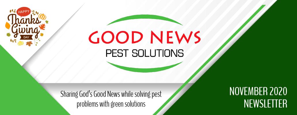 Good News Pest November Newsletter