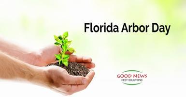 Florida Arbor Day