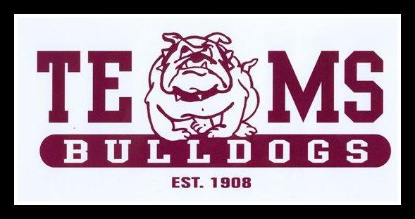 TEMS Bulldog