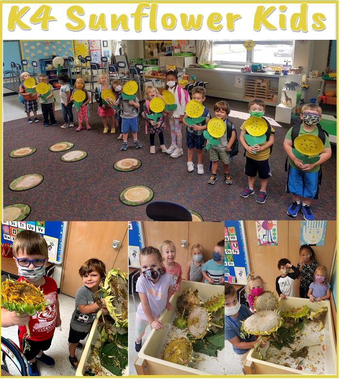 K4 Sunflower Kids.JPG