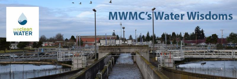 Water Wisdoms E-news