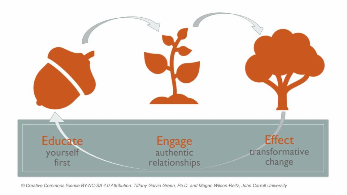 Image of TREEE diagram with an acorn - educate yourself - small plant - engage authentic relationships - and a tree - effect transformative change