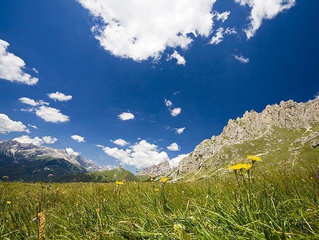 rocky_mountain_scene.jpg