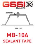 GSSI-newsletter-spotlight-10-2020