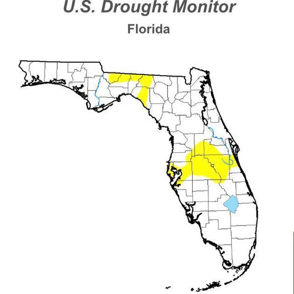 Florida Drought 6-2017