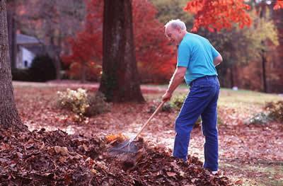 elder-man-raking.jpg