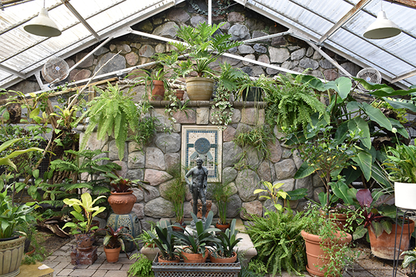 Photograph of the Conservatory Greenhouse at Cranbrook House & Gardens.