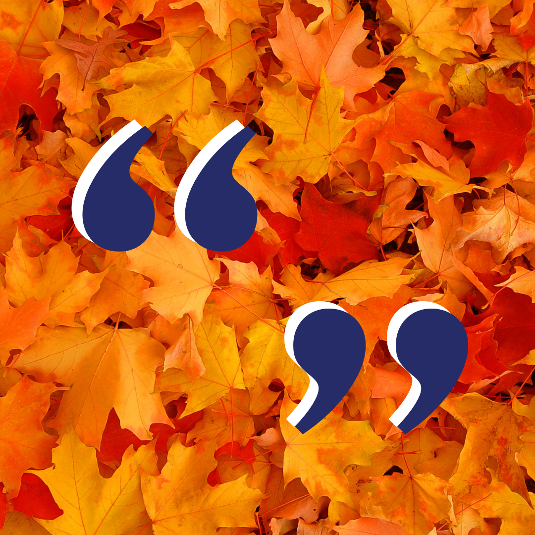 Navy blue quotation marks on a photo of yellow and orange autumn maple leaves.