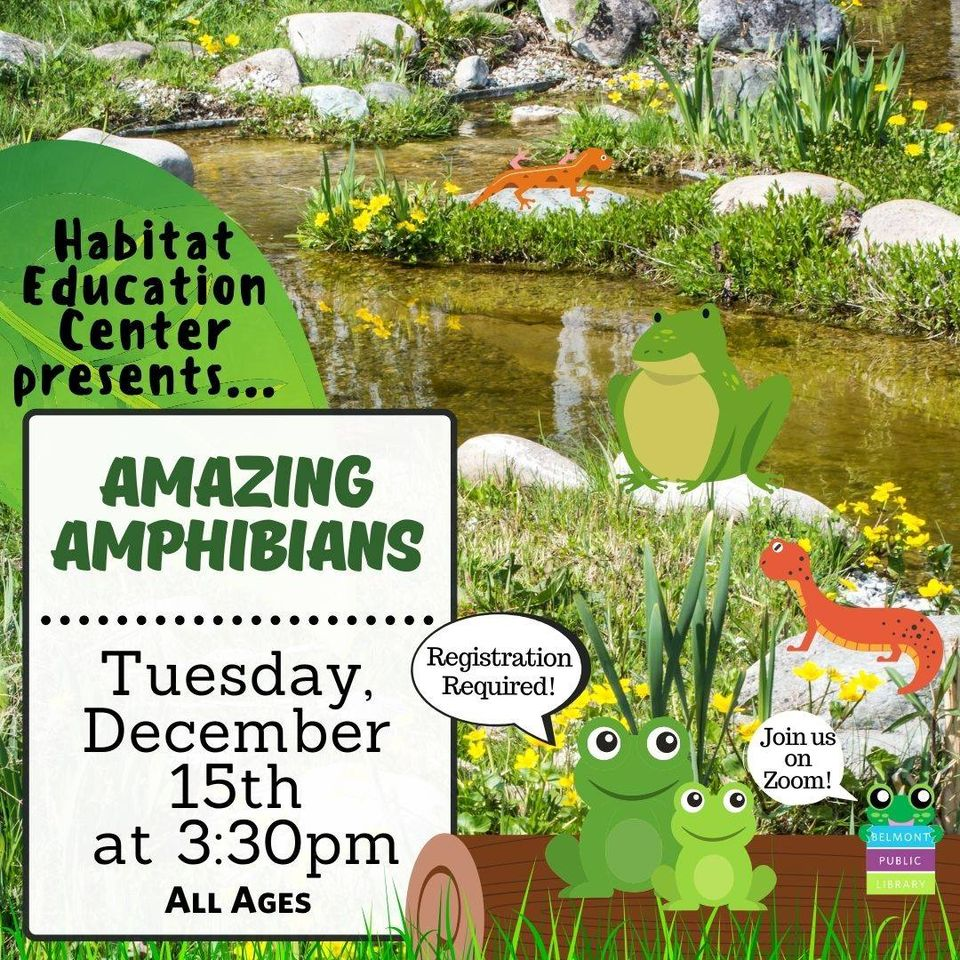 Amazing Amphibians on Tuesday December 15 at 3:30 pm for all ages