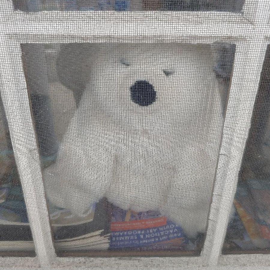 A stuffed polar bear sitting in a window.
