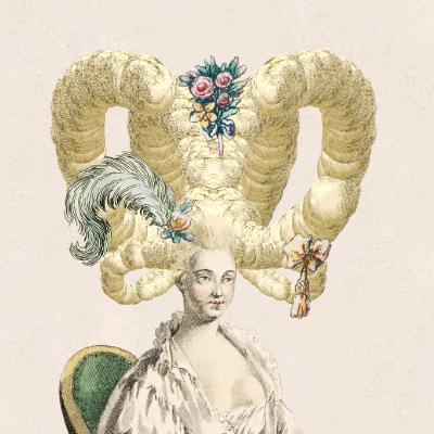 Elaborate 18th century wig illustration