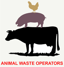 Chicken, pig, and cow