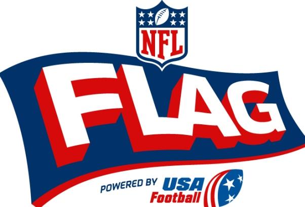 12 nfl flag