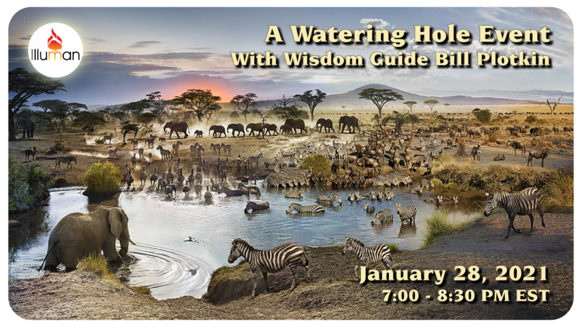 A Watering Hole Event