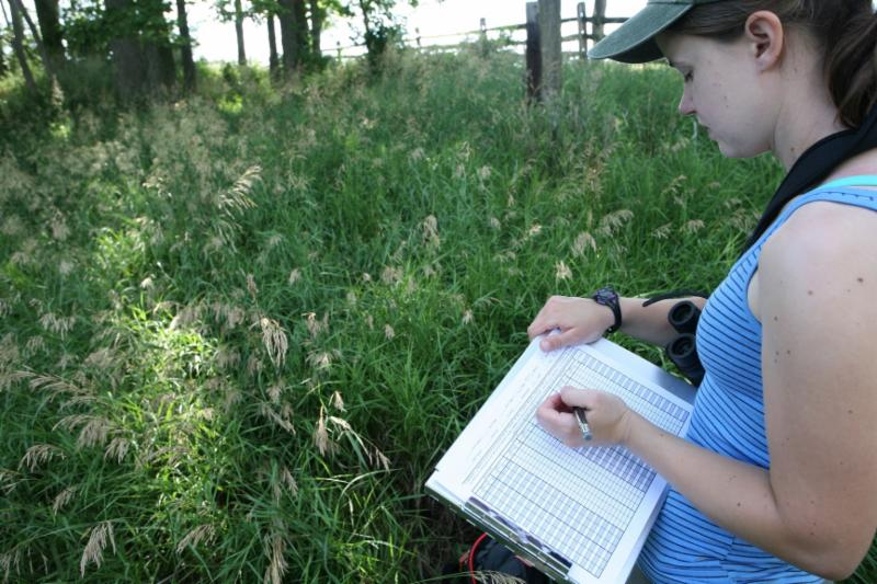A woman records observations on a clipboard while standing in a field of tall grass.